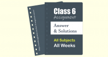 Class 6 Assignment Answer Solution