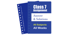 Class 7 Assignment Answer Solution