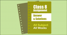Class 8 Assignment Answer Solution