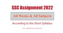 SSC Assignment 2022